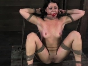 Ballgagged tied up bdsm sub whipped harshly